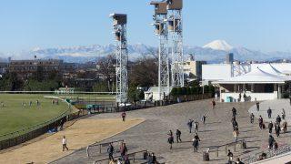 富士山丹沢