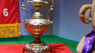 サウジアラビアロイヤルカップ